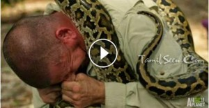 A Python Bites His Handler's Face And Won't Let Go, Threatening The Man's Life